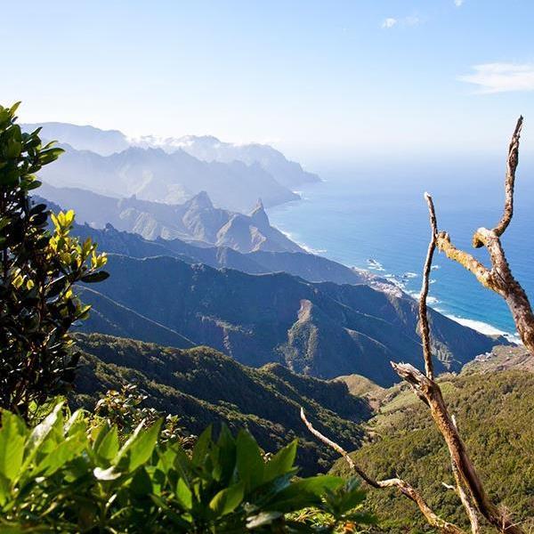 Tranquillity In Tenerife
